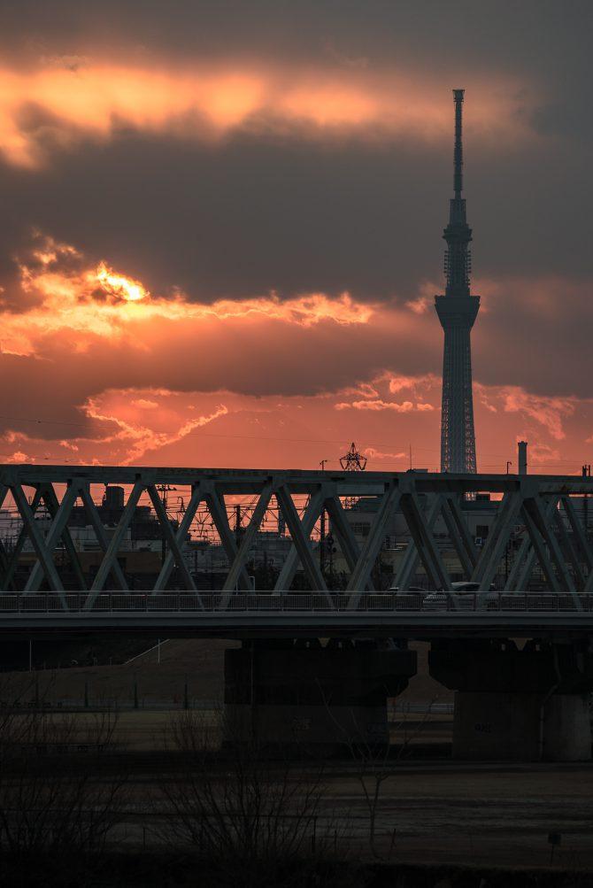 夕陽とスカイツリーと市川橋