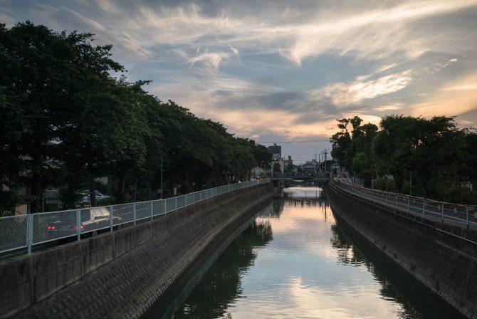 真間川の夕暮れ