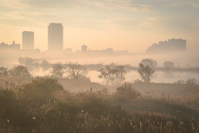 霧の江戸川