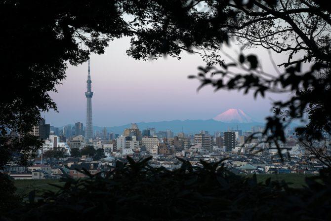 雪化粧した富士山とスカイツリー