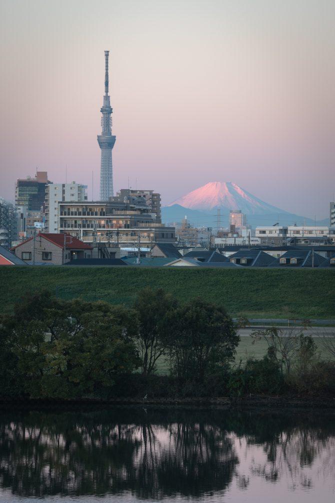 桃色に染まる富士山とスカイツリー