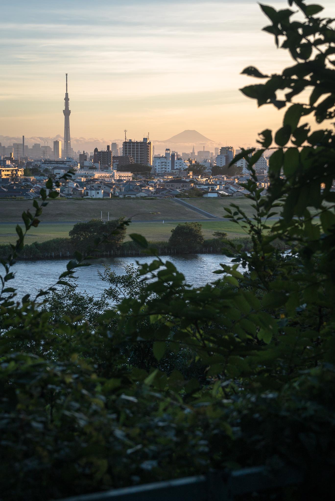 「里見公園からの夏の夕景」