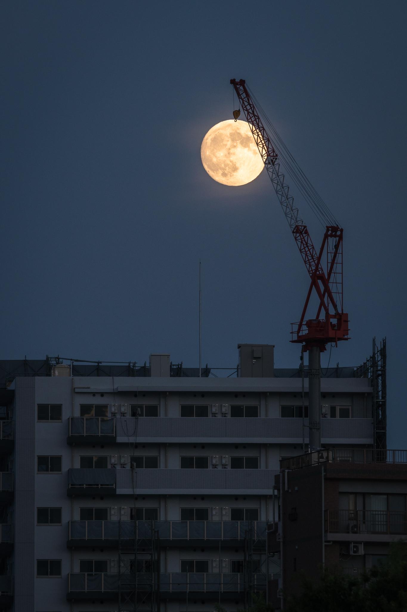 「月の出」 江戸川河川敷より