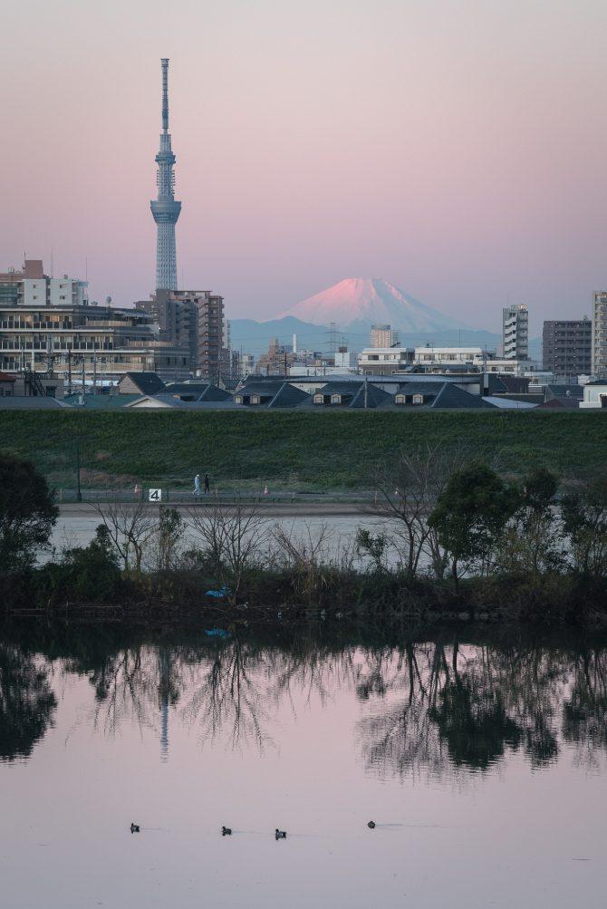 桃色の富士山、スカイツリーと江戸川