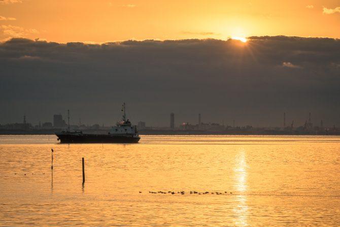 初日の出… 行徳港より