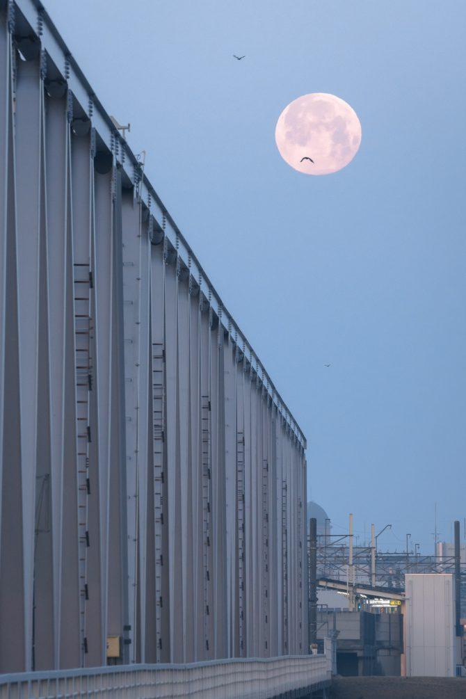 沈む満月と京成線の橋