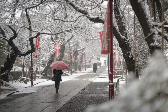 雪の中山法華経寺参道