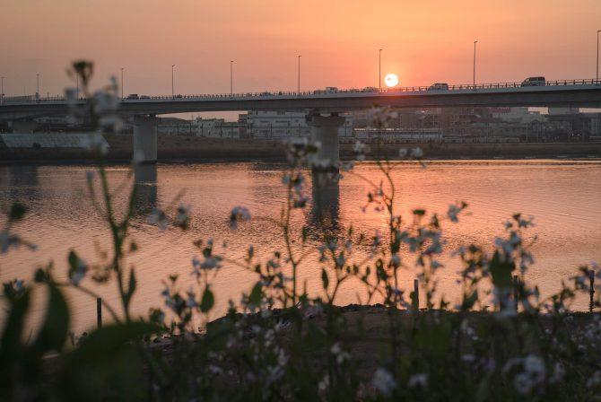 妙典橋、開通