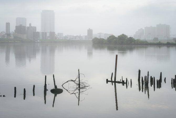 朝もやの江戸川