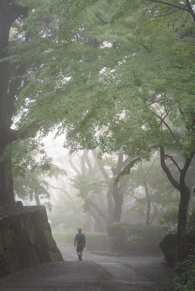 霧の里見公園