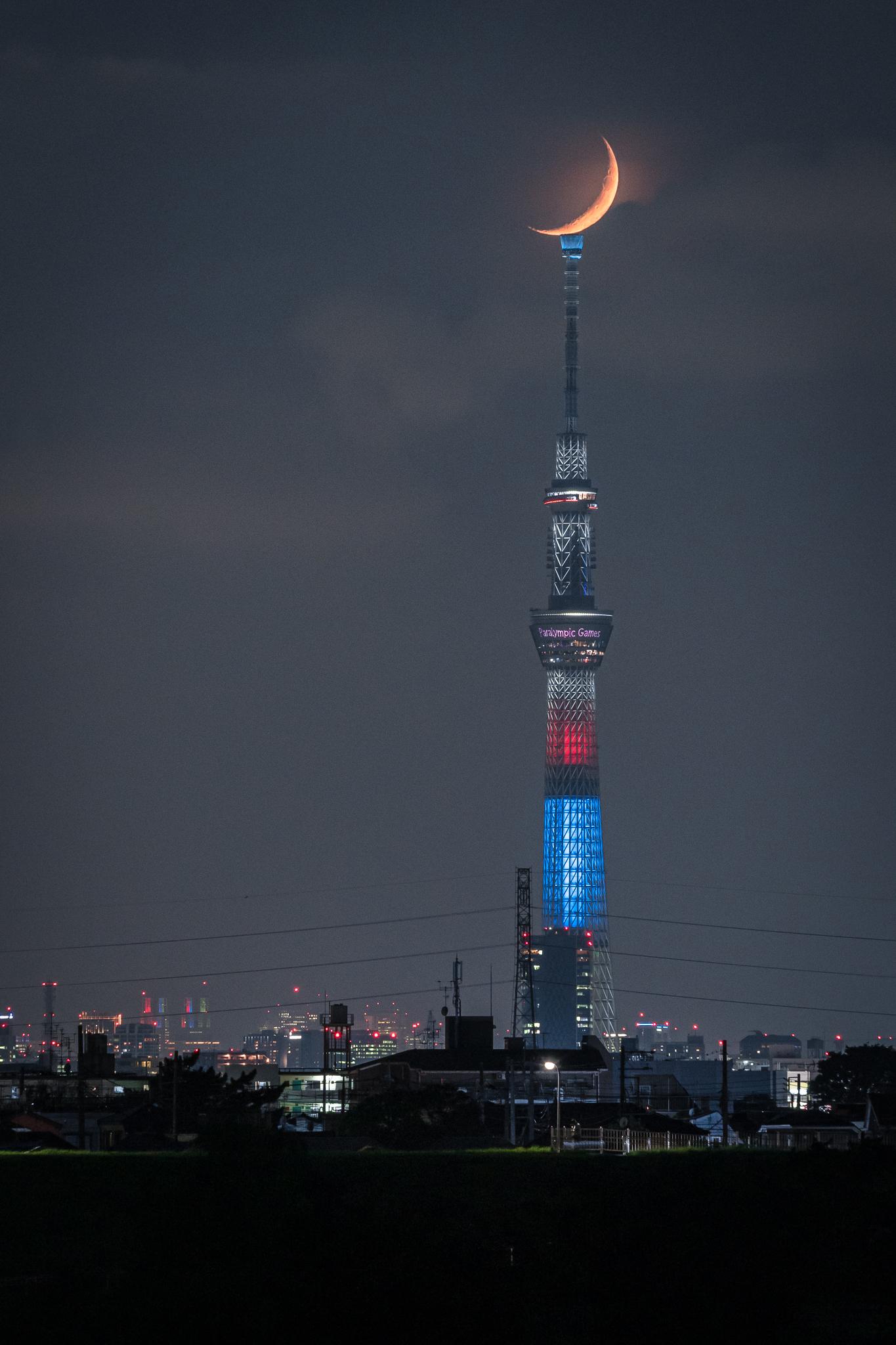 三日月とスカイツリー 2019年9月2日 江戸川より撮影