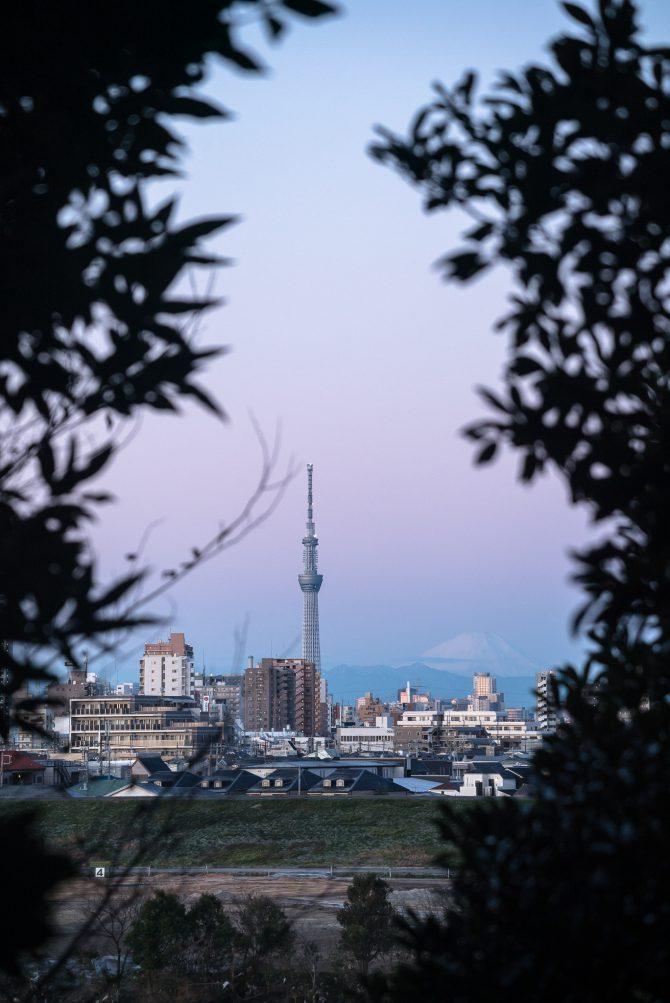 朝の富士山とスカイツリー