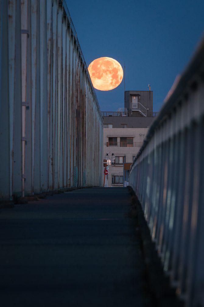 誰もいない市川橋と満月