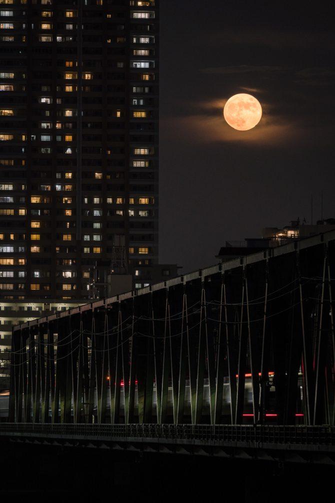 昨晩の満月