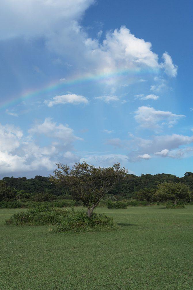 青空と虹のかけら