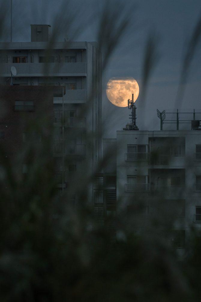 きょう10月1日は中秋の名月、あした2日は満月