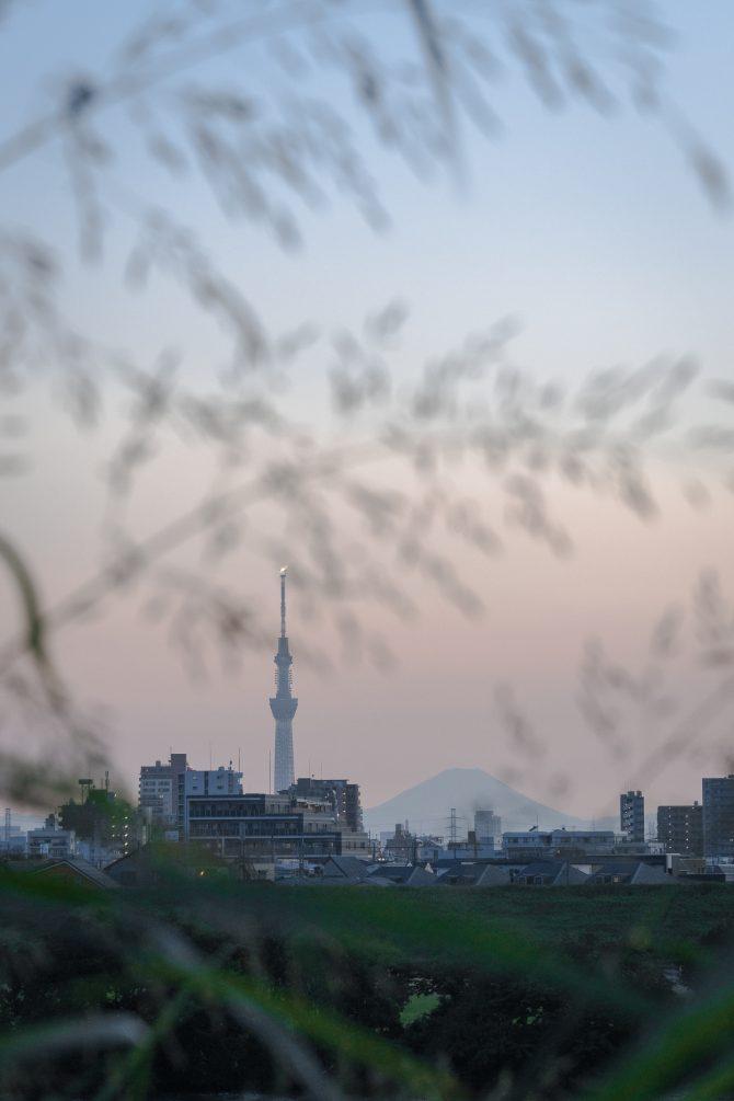 夏の夕空と富士山、スカイツリー