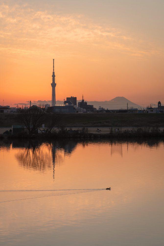夕暮れの富士山とスカイツリーと江戸川