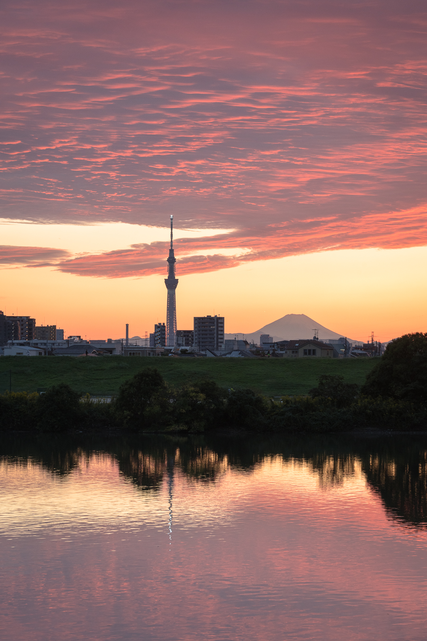夕焼け空と富士山、スカイツリー 江戸川の土手より 2020年10月18日撮影