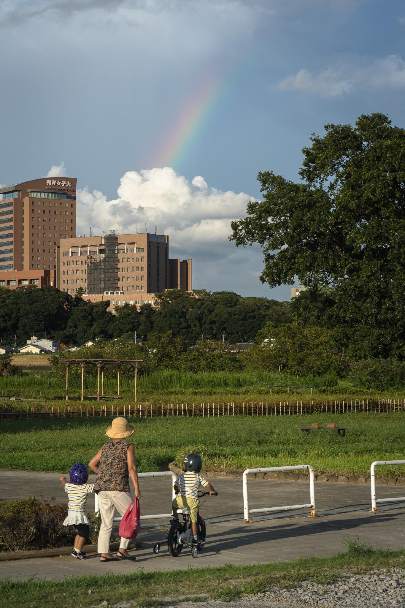 虹のかけら 小岩菖蒲園にて 2020年9月11日撮影