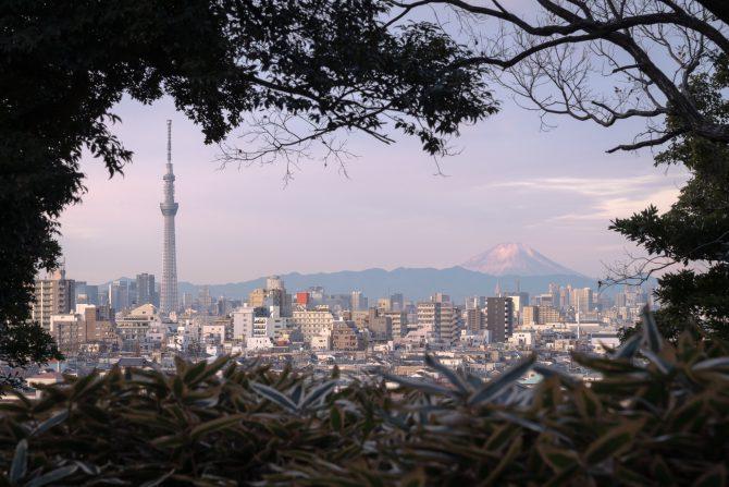 早朝の富士山とスカイツリー