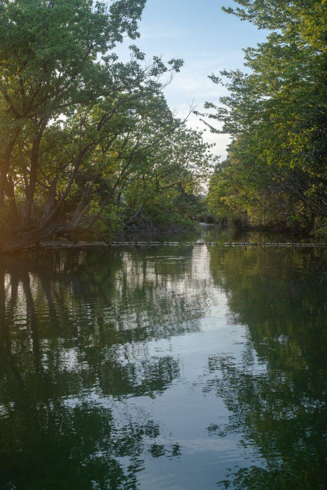 夕暮れの旧坂川跡