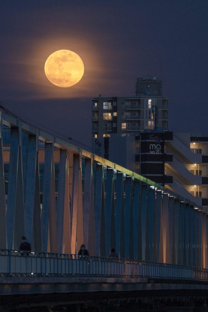 満月と市川橋