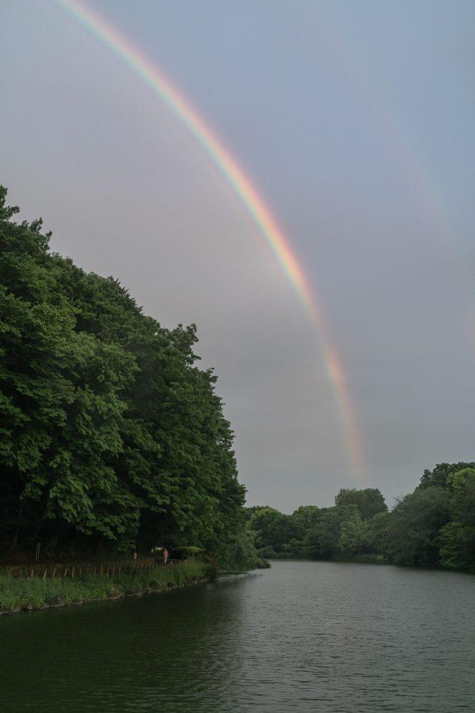 きのうの虹